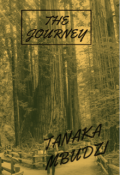 "Book cover ""The Journey"""