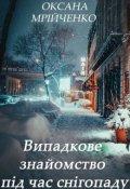 """Обкладинка книги """"Випадкове знайомство під час снігопаду"""""""