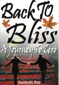 "Book cover ""Back To Bliss: A Journey To Zero"""