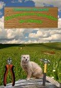 """Book cover """"Инструменты приходят на помощь"""""""
