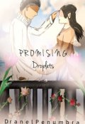 "Book cover ""Promising Droplets"""