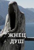 "Book cover ""Жнец Душ"""