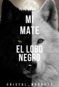 "Portada del libro ""Mi Mate El Lobo Negro"""