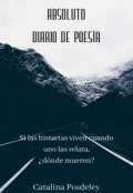 """Portada del libro """"Absoluto: Diario de poesía"""""""