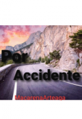 "Portada del libro ""Por Accidente """