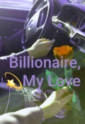 """Book cover """"Billionaire, my love"""""""