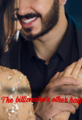 "Book cover ""The billionaire's other half"""