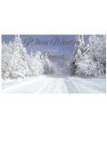 """Book cover """"When Winter Comes"""""""
