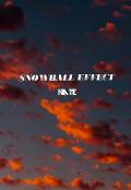 """Portada del libro """"Efecto bola de nieve en la vida."""""""
