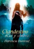 """Portada del libro """"Clandestino luz y sombra"""""""