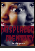 "Book cover ""Misplaced Identity:thevikingtwins"""