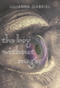 "Book cover ""The Boy Without Magic (the Saiopia Chronicles, #0.5)"""