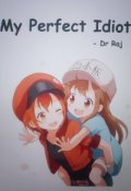 "Book cover ""My Perfect Idiot"""
