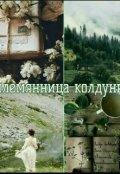 """Обкладинка книги """"Соломія Вітрицька та дари папороті"""""""