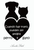 """Portada del libro """"Cuando hay trato, pueden ser amigos perro y gato (#7 S.R.)"""""""