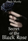"Book cover ""Secret of the Black Rose"""