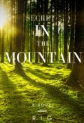 """Book cover """"Secret in the Mountain"""""""