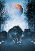 "Book cover ""Wolf"""