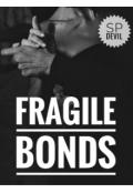 "Book cover ""Fragile Bonds"""
