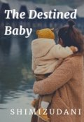 """Book cover """"The Destined Baby"""""""