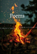 """Book cover """"Poems"""""""