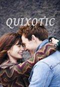 "Book cover ""Quixotic"""