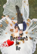 """Book cover """"Destined To Be"""""""