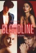 """Book cover """"Bloodline ( stolen at birth)"""""""