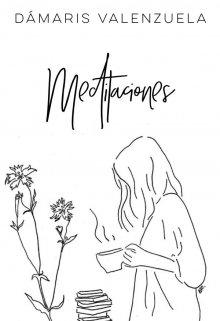 """Libro. """"Meditaciones"""" Leer online"""