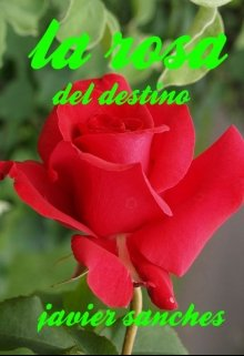 """Libro. """"La rosa del destino """" Leer online"""