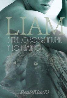 "Libro. ""Liam"" Leer online"