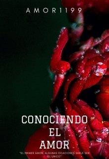 """Libro. """"Conocieno El Amor """"Version Original"""""""" Leer online"""