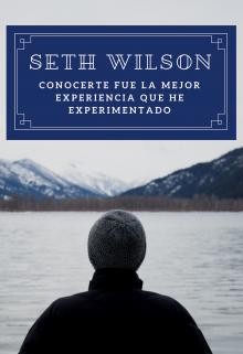 "Libro. ""Seth Wilson"" Leer online"