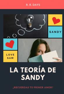 """Portada del libro """"La teoría de Sandy"""""""