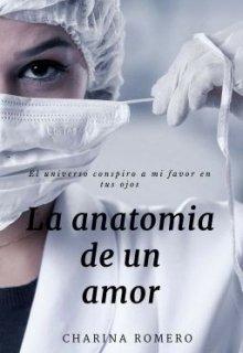 """Libro. """"La Anatomia de un amor """" Leer online"""
