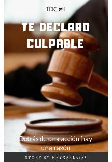 "Libro. ""Te declaro culpable"" Leer online"