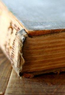 """Libro. """"El Libro De Los Fantasmas """" Leer online"""