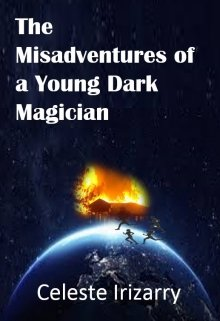 """Book. """"The Misadventures of a Young Dark Magician"""" read online"""