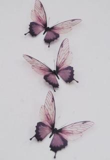 """Libro. """"El vuelo de la mariposa """" Leer online"""