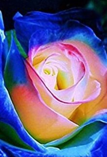 """Libro. """"Mi bella rosa"""" Leer online"""