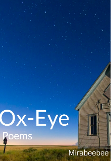 """Book. """"Ox-eye"""" read online"""