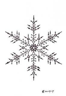 "Book. ""Snowflake"" read online"