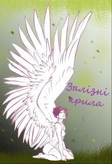 """Книга. """"Залізні крила"""" читати онлайн"""