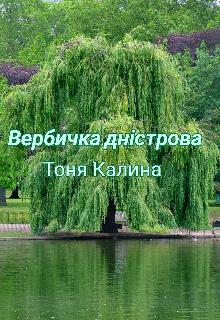 """Книга. """"Вербичка дністрова"""" читати онлайн"""