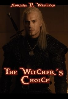 """Book. """"The Witcher´s Choice"""" read online"""