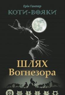 "Книга. ""Шлях Вогнезора"" читати онлайн"