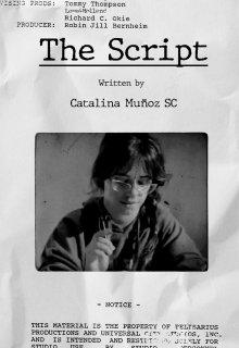 """Libro. """"The Script"""" Leer online"""
