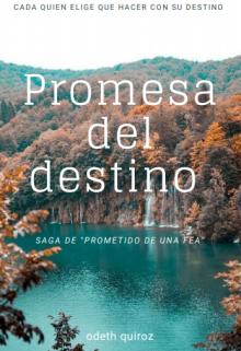 "Libro. ""Promesa del Destino "" Leer online"
