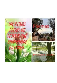 """Libro. """"Poemas Letras Que Enamoran El Alma"""" Leer online"""
