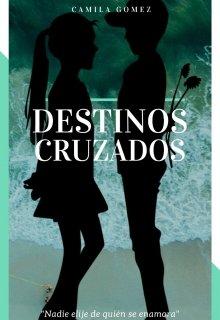"""Libro. """"Destinos Cruzados"""" Leer online"""